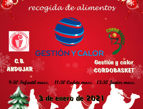 Jornada Solidaria Recogida de Alimentos 03/01/2020